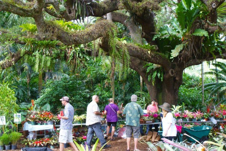 Spring Garden Festival at Fairchild Garden – Miami\'s Community News