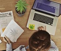 cannabis marijuana jobs